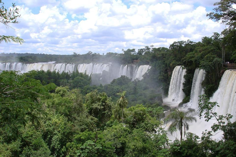 amazonské pralesy