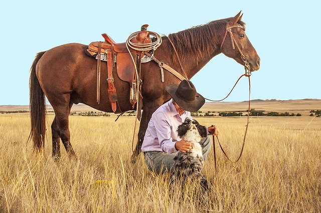 kovboj u koně.jpg